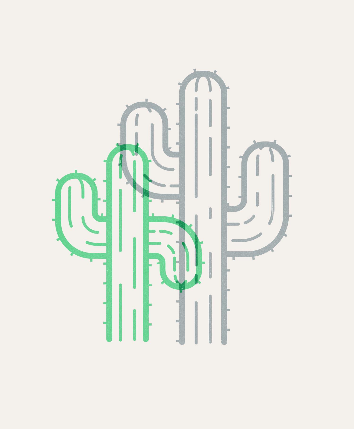 Cacti-coltonfloris